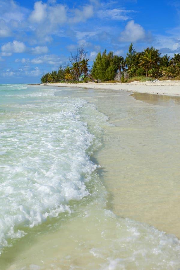 Bahamas beach stock photo