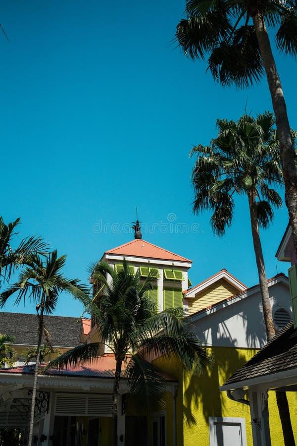 Bahamas Buduje z drzewkami palmowymi zdjęcie stock