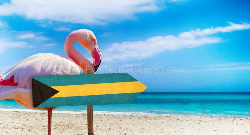 Bahamas flag on wooden table sign on beach background with pink flamingo. There is beach and clear water of sea and blue sky in. The background. It is tropical stock photos