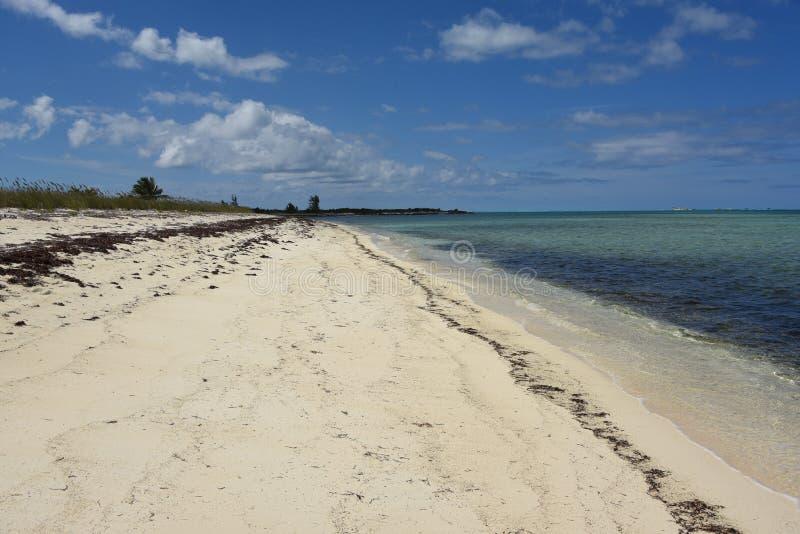 Bahamas härlig öde vit sandkust på Mayaguana royaltyfri bild