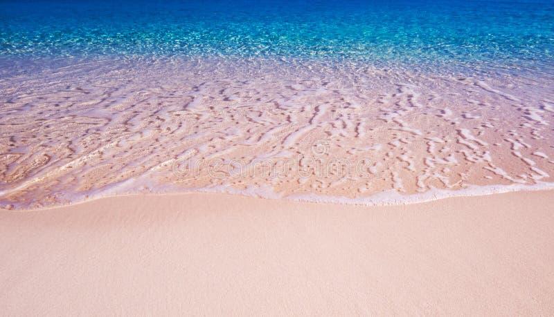 Bahamas: Jaskrawy słoneczny dzień przy plażą obraz stock