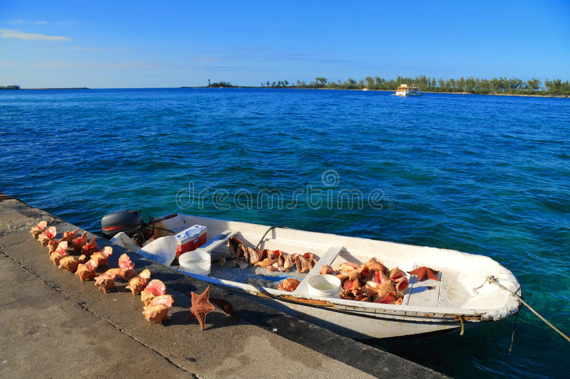 Download Bahamas pier stock image. Image of island, city, nautical - 23800131