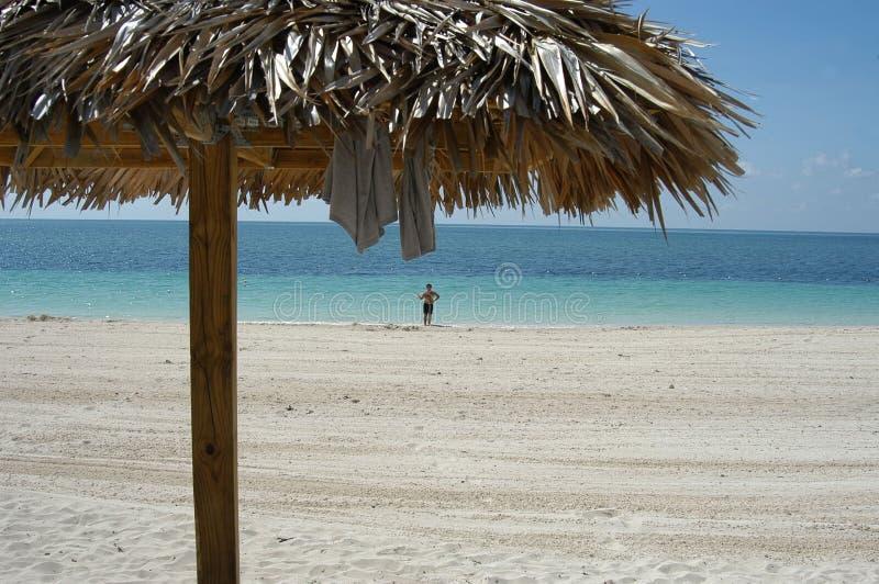 bahamas strand royaltyfri bild