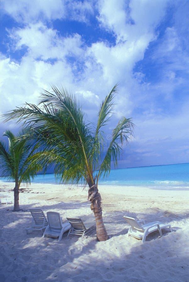 Bahamas Tropics 04. Tropical photo of Bahamas, Beautiful blue water, white sands, blue skies, palm trees royalty free stock images