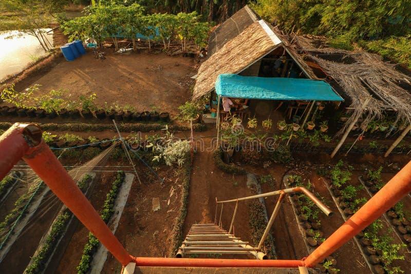 Bahay Kubo in den Philippinen gesehen von oben lizenzfreie stockfotografie