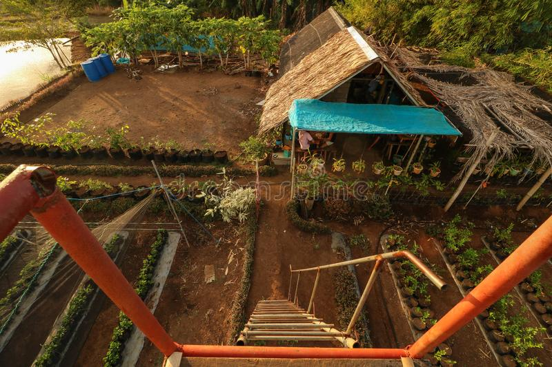 Bahay Kubo in the Philippines seen from above. Scenic and beautiful view from above of a bahay kubo in a strawberry farm in Ocampo Camarines Sur Philippines royalty free stock photography