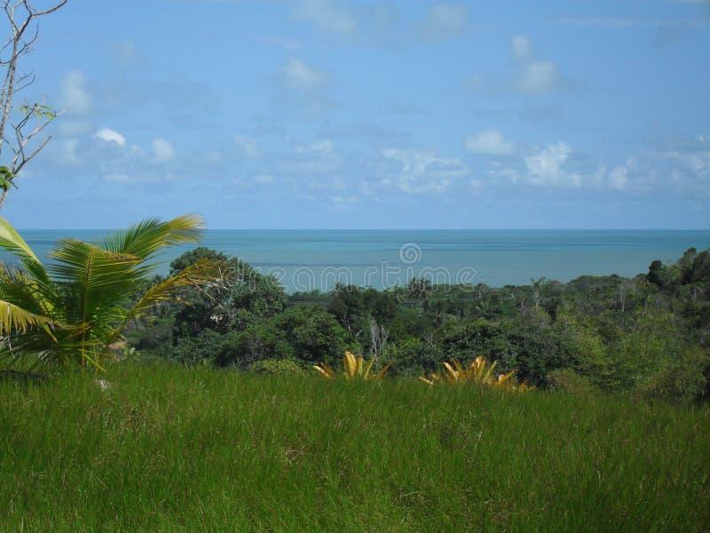 Bahia Brazil photos libres de droits