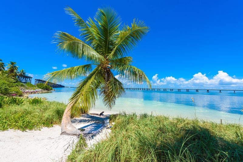 Bahia Honda State Park - Calusa Beach, Florida Keys - tropical coast with paradise beaches - USA stock photography