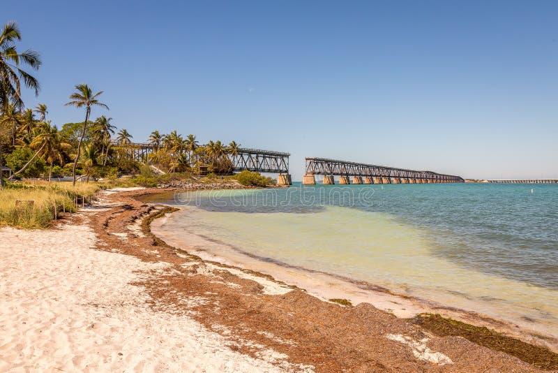 Bahia Honda State Park is een park van de staat met een open openbaar strand stock fotografie