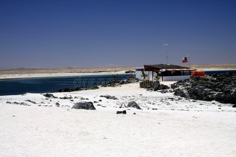 BAHIA INGLESA, CHILE - DECEMBER 26 2011: Vit sandstrandPlaya blanca på Stillahavskusten av den Atacama öknen royaltyfri foto