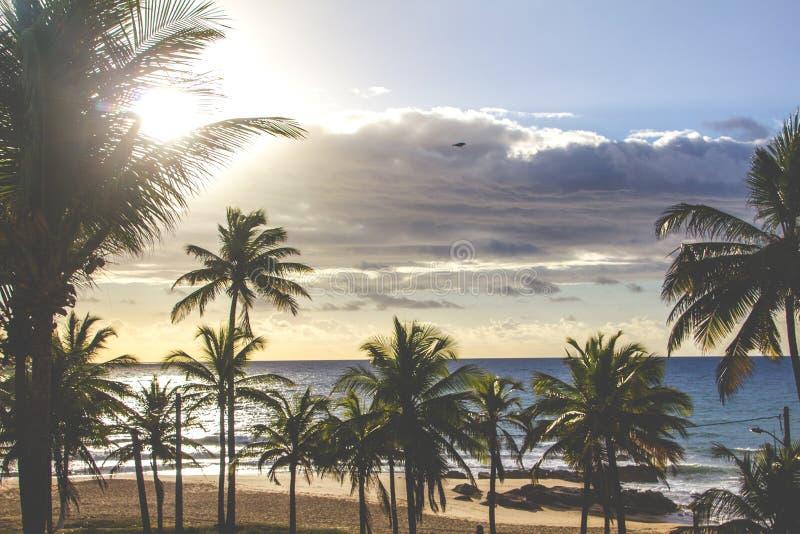 Bahia-Strand lizenzfreies stockfoto