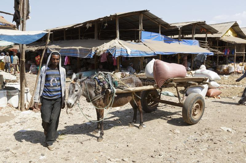 Bahir Dar, Ethiopia, February 14 2015: A donkey carriage with a farmer standing by on a market to transport goods. Africa royalty free stock images