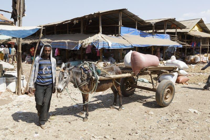 Bahir Dar, Etiopía, el 14 de febrero de 2015: Un carro del burro con un granjero que hace una pausa en un mercado para transporta imágenes de archivo libres de regalías