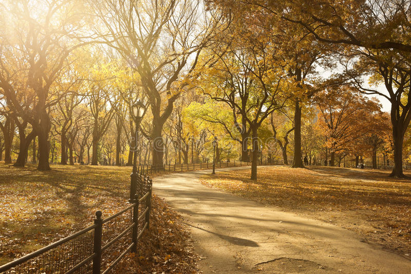 Bahn durch Central Park stockbilder