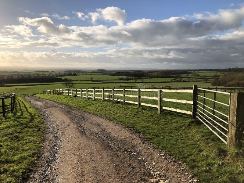 Bahn durch hellgrüne Felder in einer ländlichen Landschaft, England lizenzfreie stockfotos