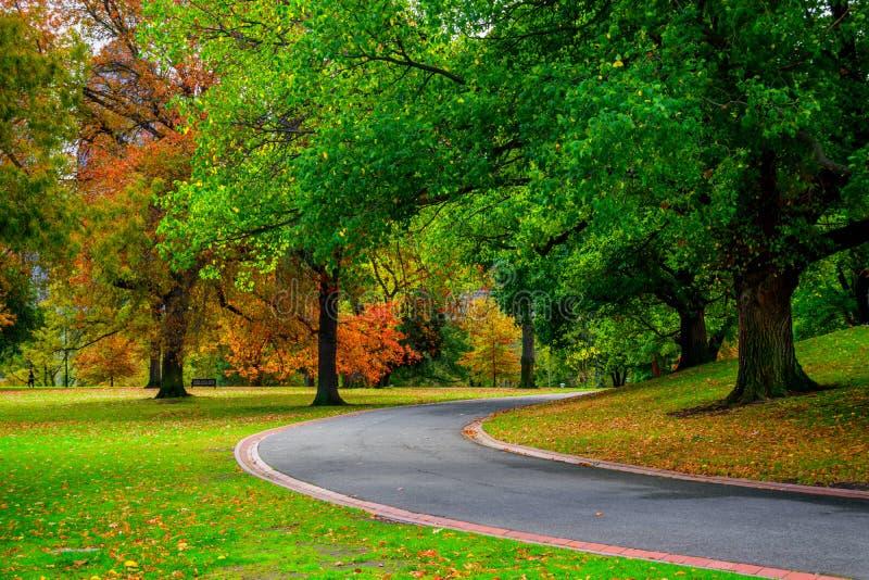 Bahn im Park und in den Bäumen im Herbst stockfoto