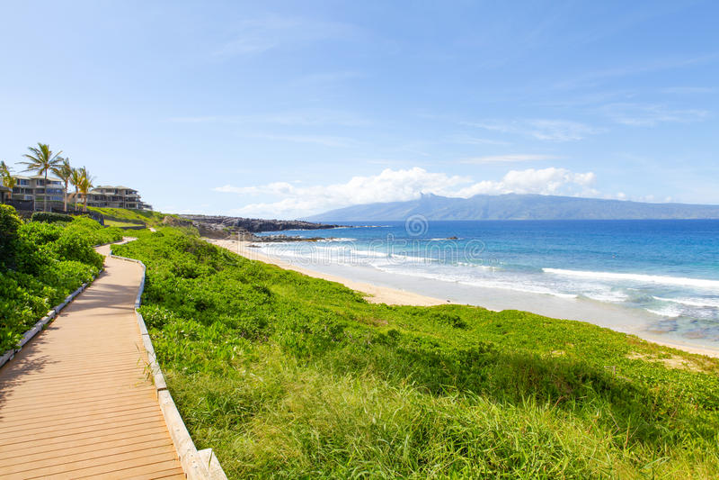 Bahn nahe Ozean Hellgrünes Gras Maui Hawaii lizenzfreies stockfoto