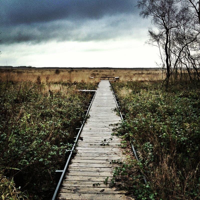 Bahn zu den Feldern lizenzfreie stockbilder