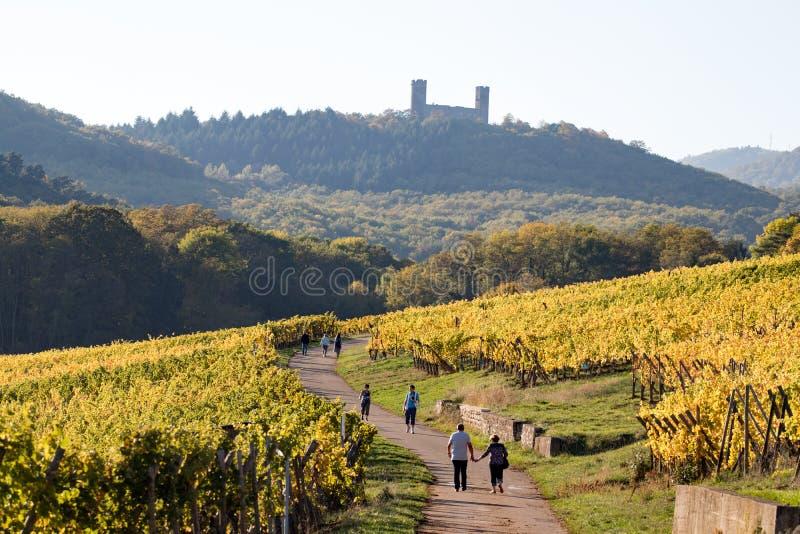 Bahn zu Landsberg-Schloss stockbild