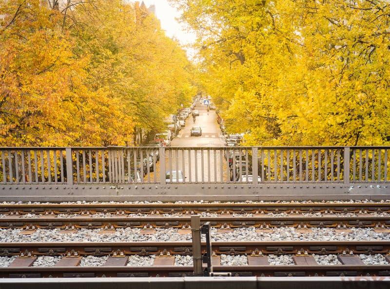 Bahnen des Himmelzugs mit schönem gelbem Ahornbaum lizenzfreie stockfotos