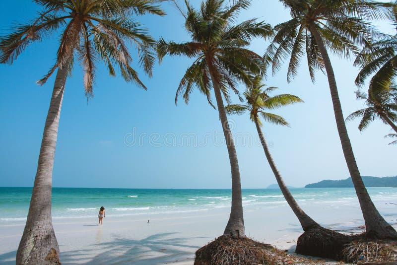 Bai Sao Beach på den Phu Quoc ön, Vietnam royaltyfri foto