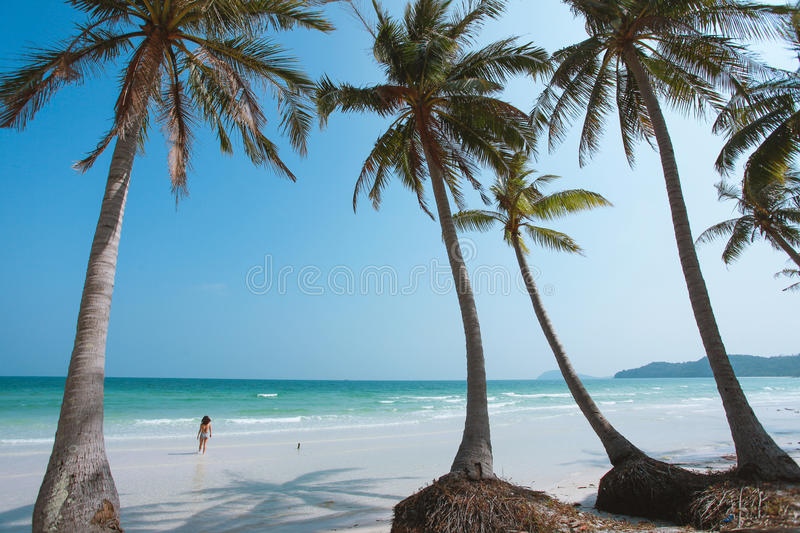 Bai Sao Beach at Phu Quoc Island, Vietnam royalty free stock photo