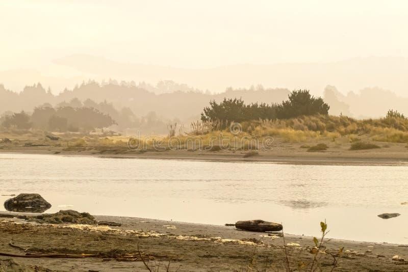 Baia California - marea della pietra della luna che scorre dentro fra le dune e l'erba del mare ed il fogliame basso - nebbiosa e fotografia stock libera da diritti