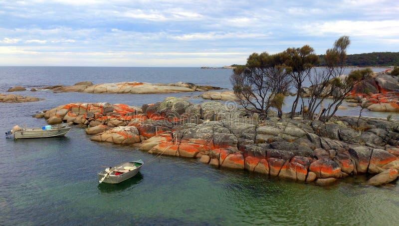 Baia dei fuochi, Tasmania fotografie stock libere da diritti