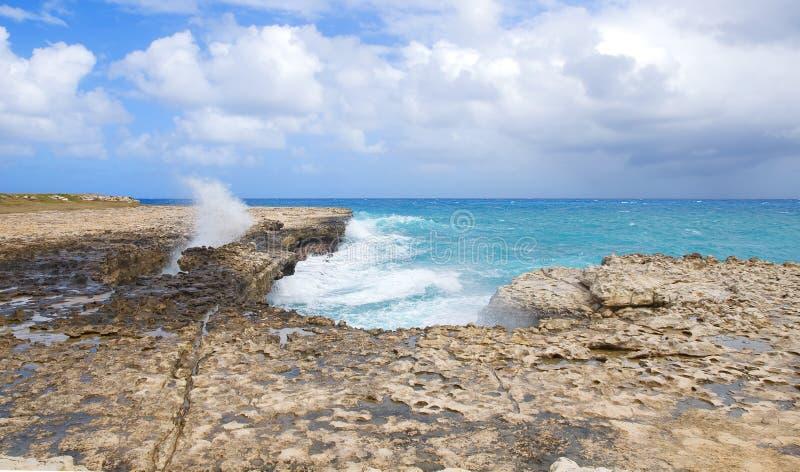 Baia del ponte del ` s del diavolo - Antigua e Barbuda marino caraibico fotografia stock libera da diritti