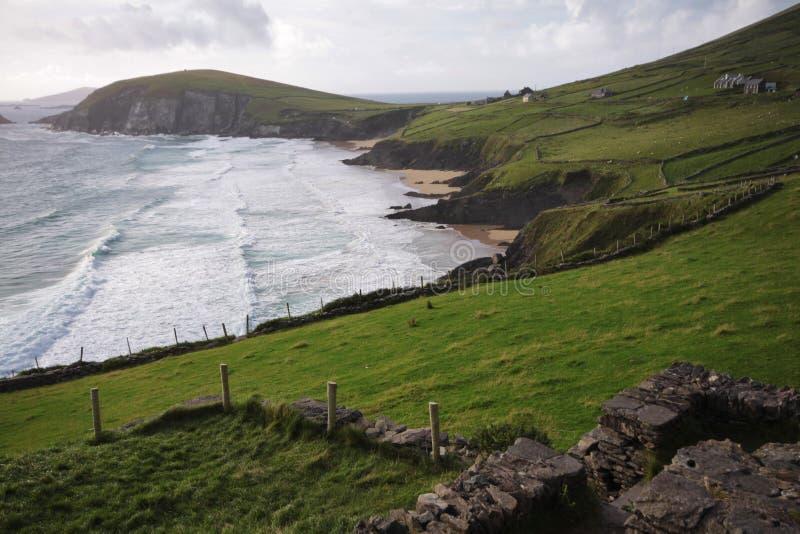 Baia della testa di Slea e promontorio, Irlanda immagine stock libera da diritti