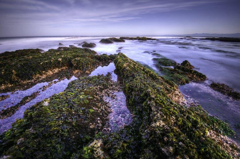 Baia di Corallina fotografia stock libera da diritti