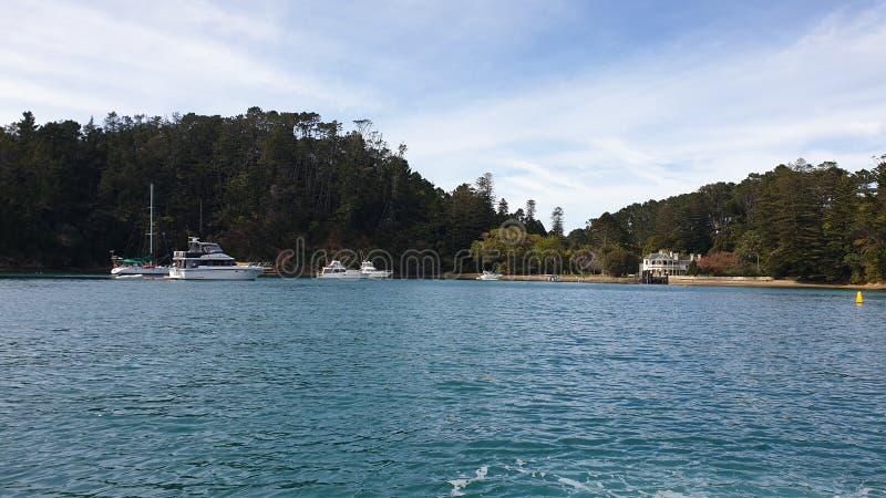 Baia di Mansion, isola di Kawau immagine stock libera da diritti