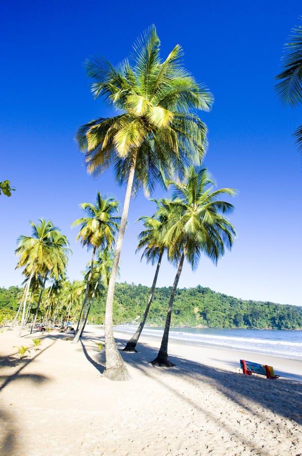 Baia di Maracas, Trinidad immagine stock