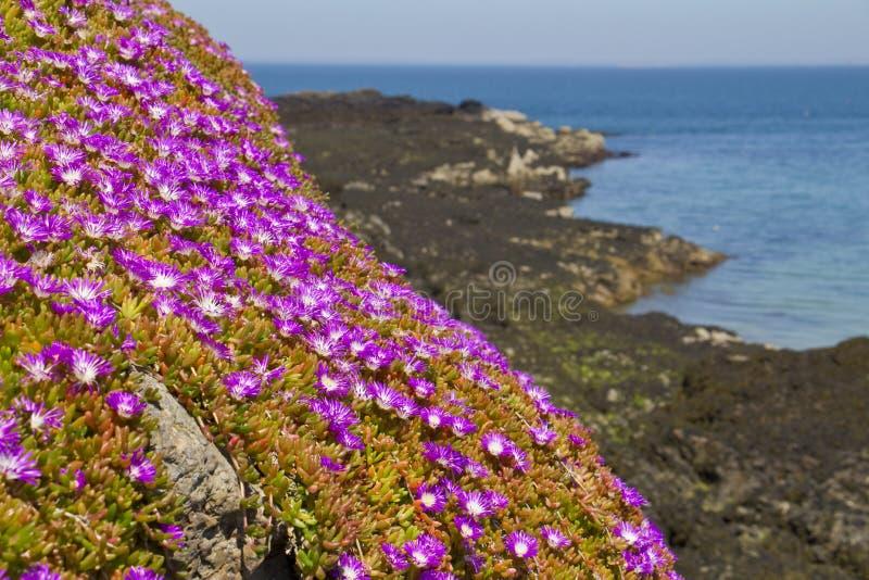 Baia di Rozel, t Martins, Jersey, isole del canale, Regno Unito fotografia stock