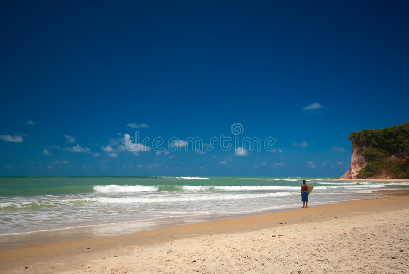 Download Baia Dos Golfinhos Near Pipa Brazil Stock Image - Image of natal, seasons: 12120931