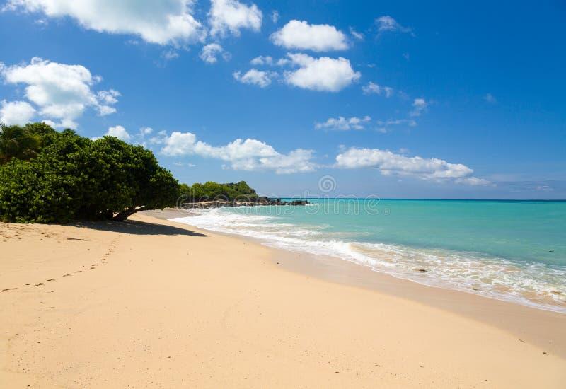 Baia felice fuori dal litorale della st Martin i Caraibi immagini stock libere da diritti
