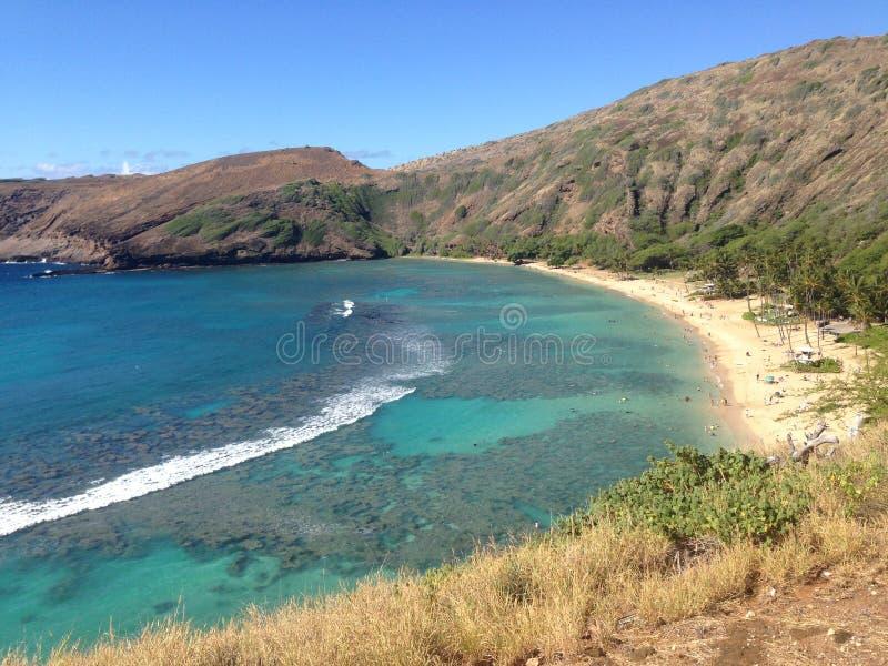 Baia Honolulu Hawai di Hanauma fotografia stock libera da diritti