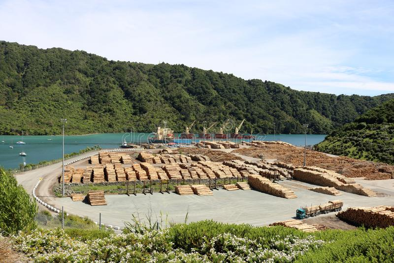 Baia NZ di Shakespeare del molo di Waimahara del legname di caricamento fotografia stock