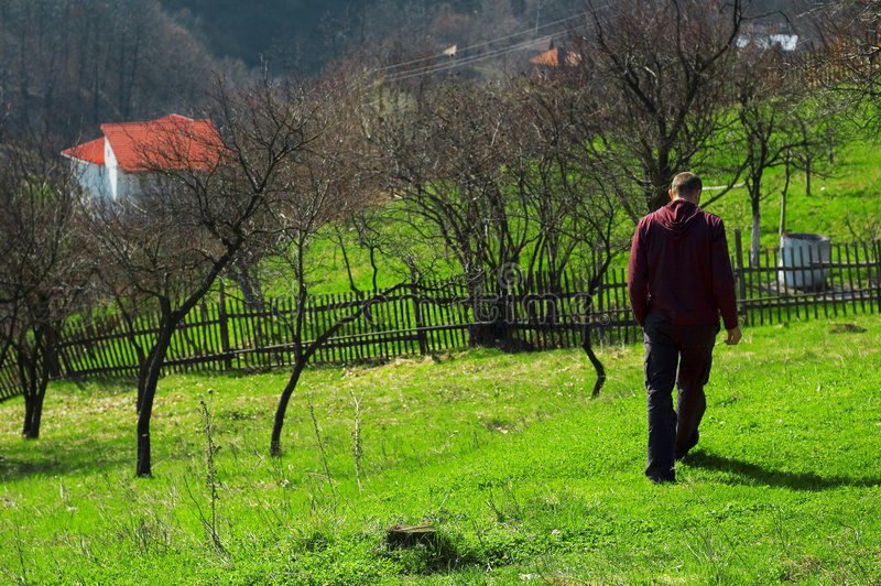 In Baia Stute schlendern, Rumänien stockbild