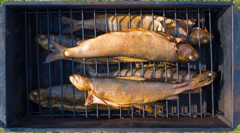 Baicalensis fumado de Thymallus do timalo de Baikal fotos de stock