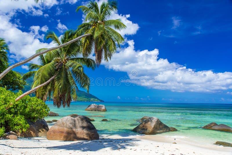 Baie Beau Vallon - paradisstrand på ön Mahe - från Seychellerna härlig kust royaltyfri bild