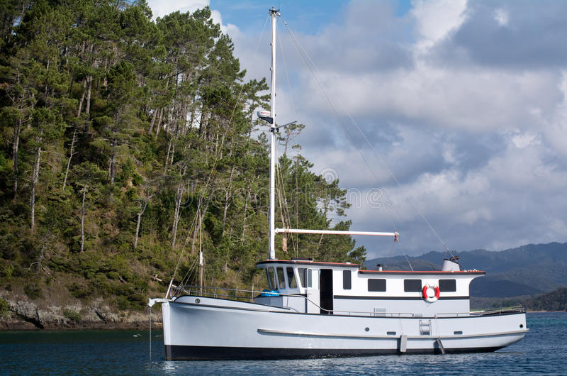 Baie d'île Nouvelle-Zélande - île de Roberton images stock