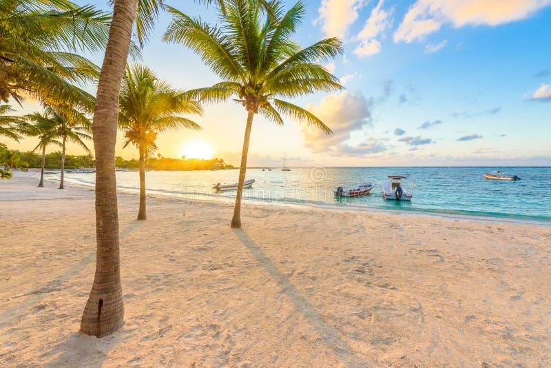 Baie d'Akumal - plage blanche des Caraïbes dans le Maya de la Riviera, côte de Yucatan et Quintana Roo, Mexique photos stock