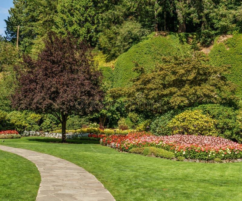 Baie de Brentwood, CANADA - 1er septembre 2018 : Paysage neutre de jardin décoratif vert avec le champ vert images libres de droits