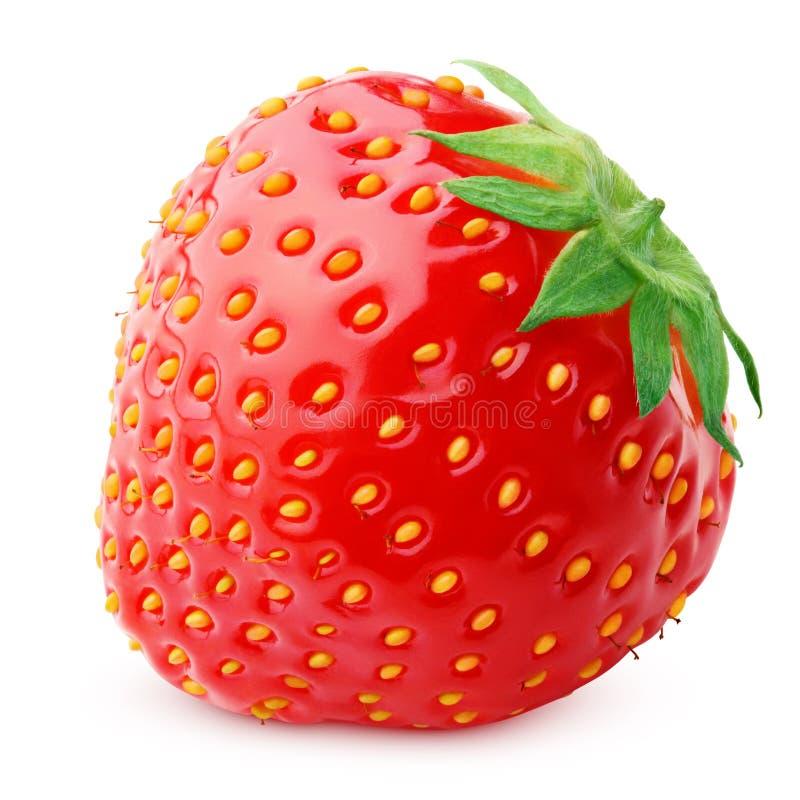 Baie de fraise d'isolement sur le blanc photos stock