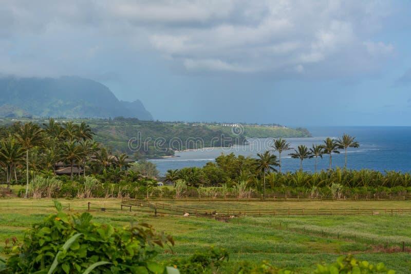 Baie de Kilauea, Hawaï photo libre de droits