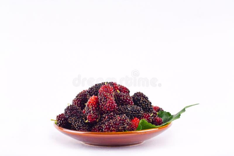 Baie et feuille rouges et noires de mûre dans la cuvette brune sur la nourriture saine de fruit de mûre de fond blanc d'isolement photographie stock