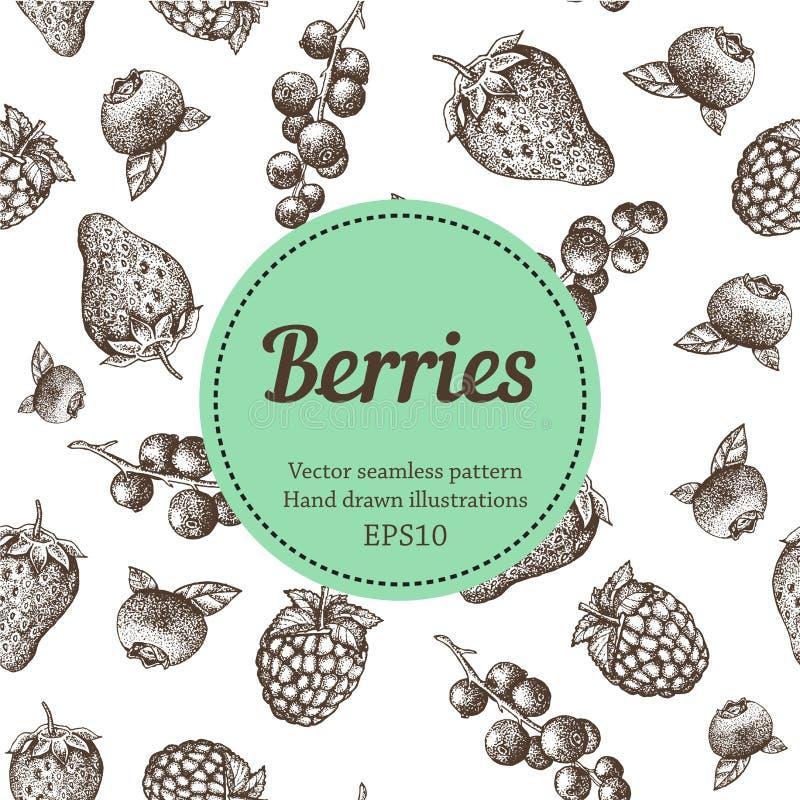 Baie, fraise, mûre, groseille, framboise, modèle sans couture tiré par la main de vecteur Illustration organique de nature images libres de droits