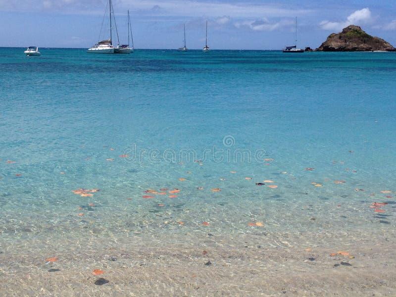 Baie profonde, Antigua images stock