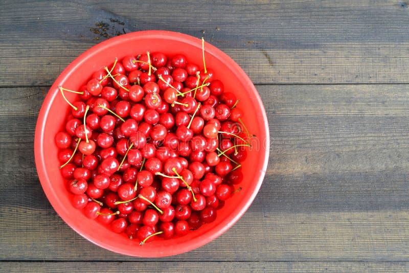 Baies d'une merise sur un fond en bois dans une tasse rouge Vue sup?rieure Cerise juteuse mûre rouge dans le plat sur en bois rus image stock